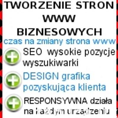 Wykonanie strony internetowej biznesowej. Tworzenie sklepów.