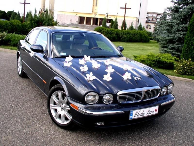 AUTO Samochód do ślubu zabytkowy kabriolet Alfa Romeo Nestor 64