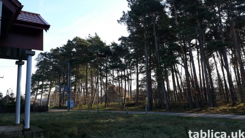 Dom nad jeziorem Łebsko 8