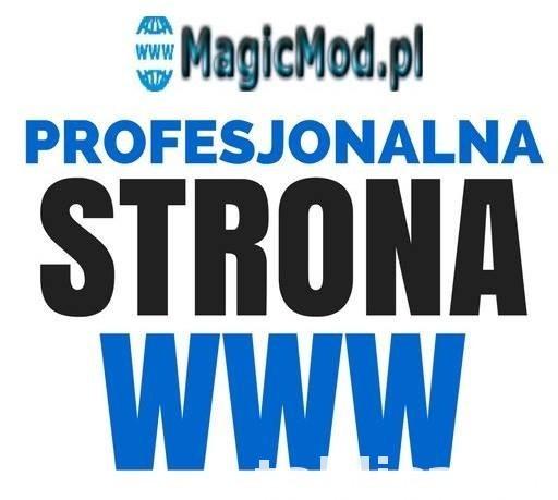 Strona Internetowa-Tworzenie Stron-Profesjonalna Strona WWW- 0