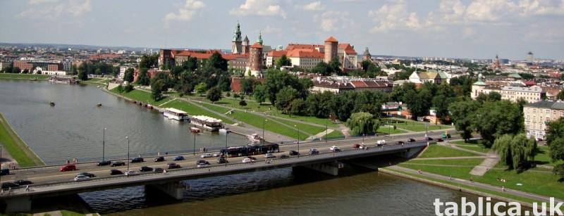 Nauka języka polskiego, edukacja domowa, korepetycje online, 0