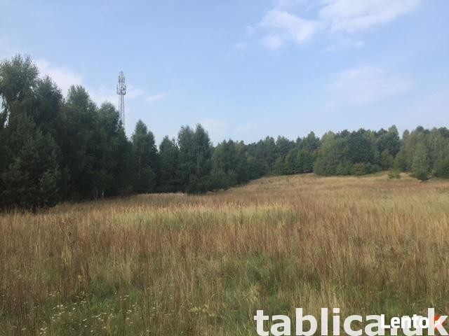 Building plot, Poland, Złoty Potok, Janów commune, area 7623 0