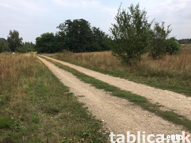 Building plot, Poland, Złoty Potok, Janów commune, area 7623 1