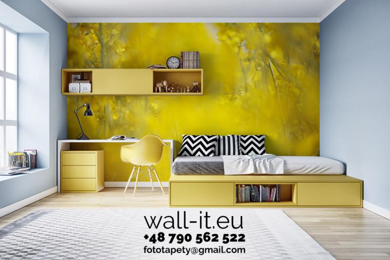 Photowall, wallcover, fototapety na wymiar. Custom size. 38
