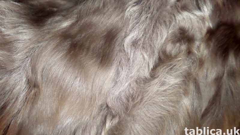 For Sale: Long Astrakhan Goat Fur  3