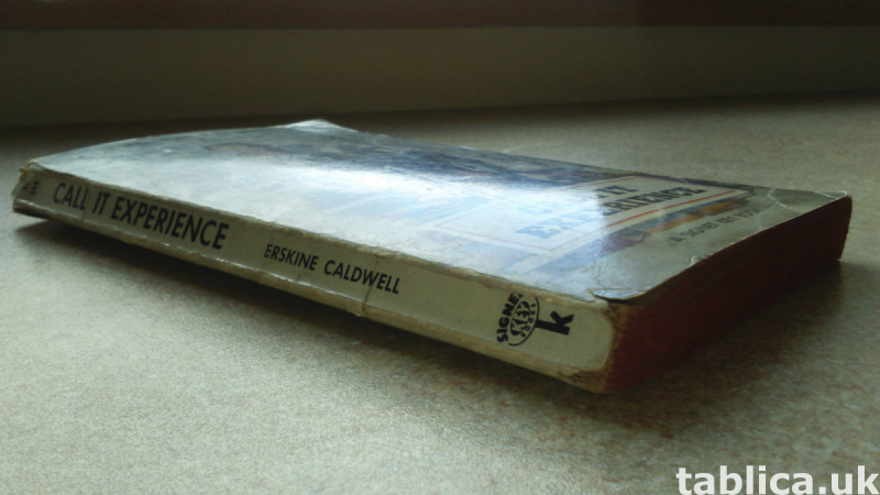 Call It Experience - Erskine Caldwell 3