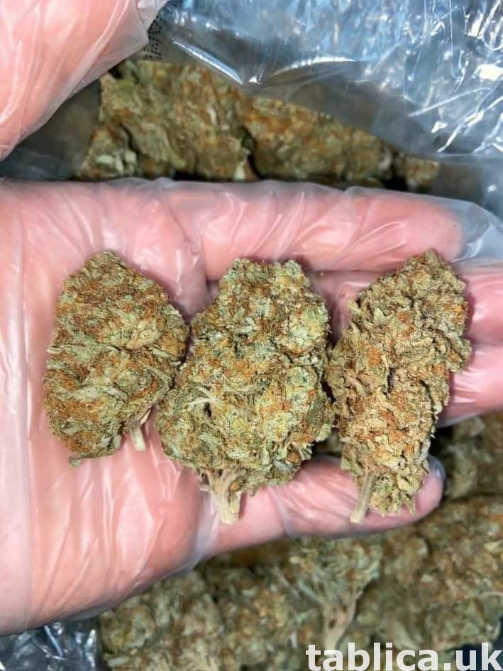 - 60 zł.. oxcodine.. ketamin liquid marijuana 4