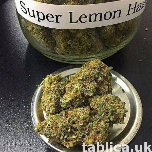 LSD.. CBD... marijuana.. oxcodine 1